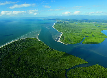 Explore The Daintree